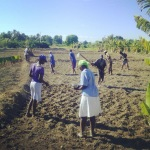 Planting beans!