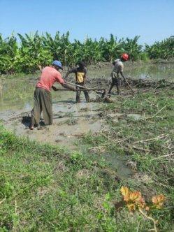 preparing land 3