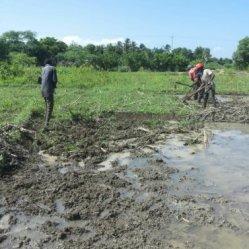 preparing land 4