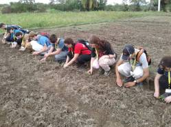 Health for Haiti Students Planting Tomatoes in January